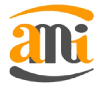 Logo АМИКОМ